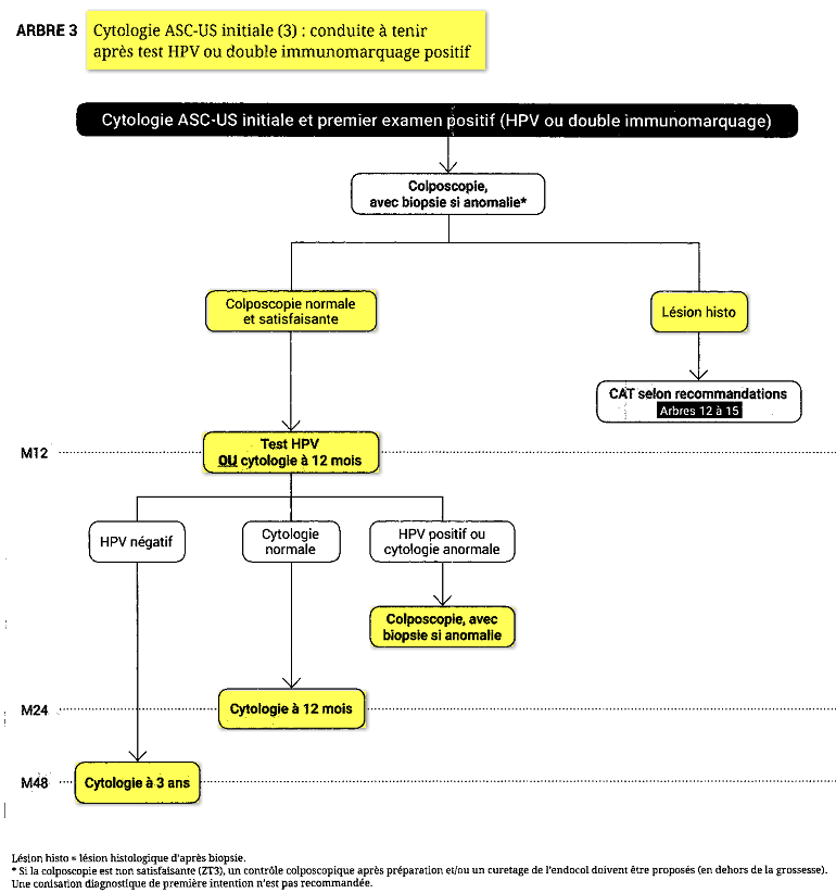 hpv positif et frottis ascus gastric cancer guideline esmo